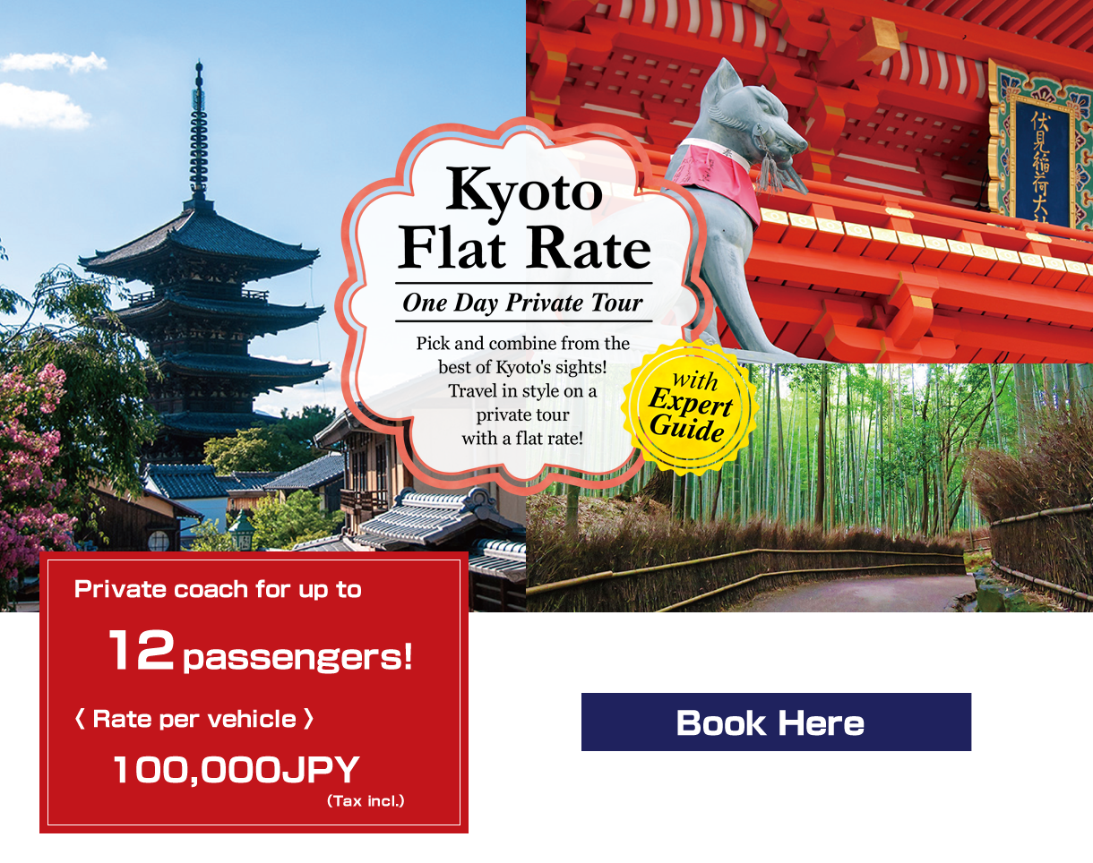 Kyoto Flat Rate One Day Private Tour with Expert Guide